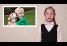 Безопасное поведение при встрече с собакой. Видео урок для детей 11-14 лет.
